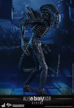 1/6 Sixth Scale Movie Masterpiece Alien Warrior Figure Hot Toys