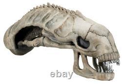ALIENS 36 Xenomorph Skull Foam Replica (NECA) #NEW