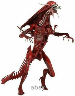 Aliens Genocide Xenomorph Red Queen Ultra Deluxe 15 Action Figure 01