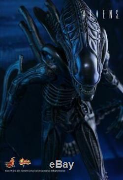 Aliens Xenomorph Alien Warrior 1/6 Scale Hot Toys 14 Figure