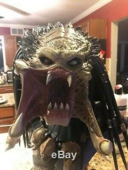 Avp Alien vs Predators Wolf Predator Legendary Scale Bust Sideshow. Com Exclusive