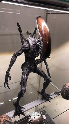 Hot Toys AVP Alien Warrior 16 Scale Figure MMS17 Alien VS Predator Sideshow