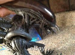 Hot Toys AVP Alien vs Predator Alien Warrior 16 Scale Figure MMS17