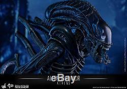 Hot Toys Alien Warrior 1/6 Scale Figure Aliens 30th Anniversary Ripley New