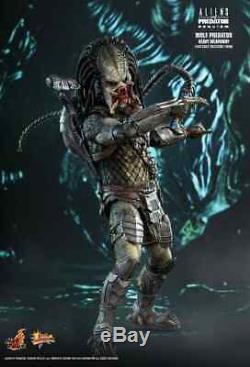 Hot Toys Alien vs Predator Wolf Predator Heavy Weaponry 1/6 Figure MMS443