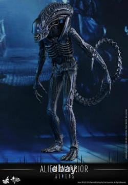 Hot Toys Aliens Alien Warrior Movie Masterpiece