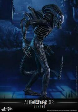 In Stock Hot Toys 1/6 Aliens MMS354 Alien Warrior 30th Anniversary of Aliens Toy