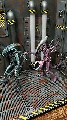 Xenowerx Alien Diorama Stand AVP Predator Neca Xenomorph